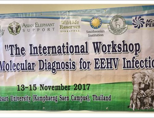 EEHV Training Workshop, November 2017