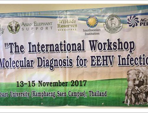 EEHV Training Workshop, November 2017